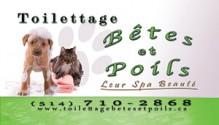 Toilettage Betes et Poils